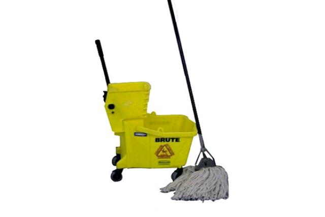 Mop With Handle