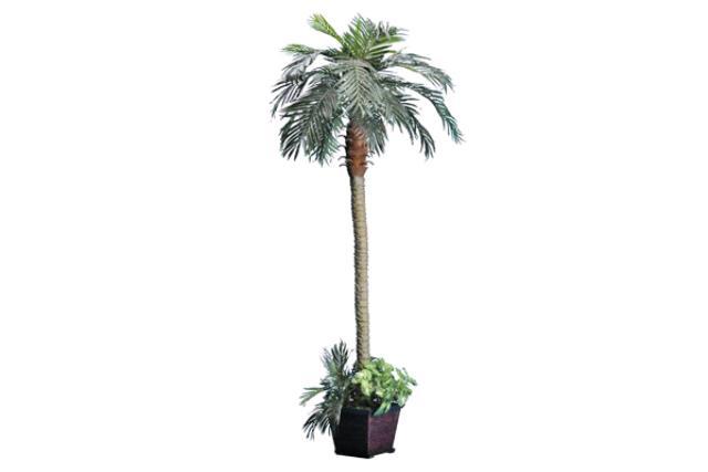 8' Palm Tree