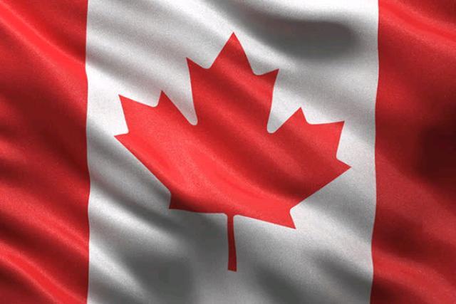 Canada Flag, 36