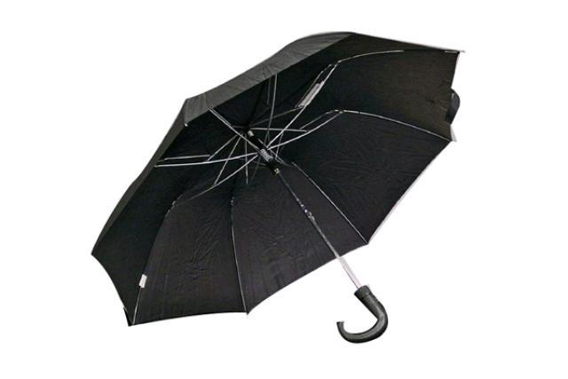 Hand-held Umbrella