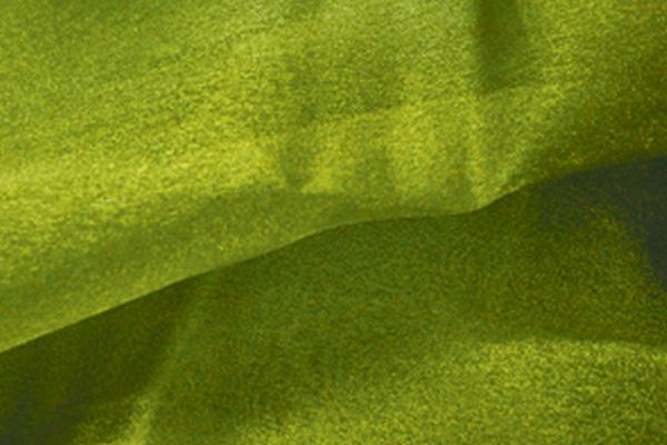 Pistachio Organza Linen