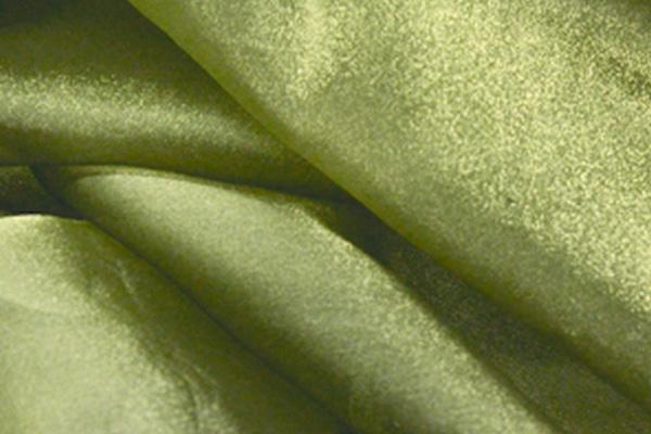 Sage Organza Linen