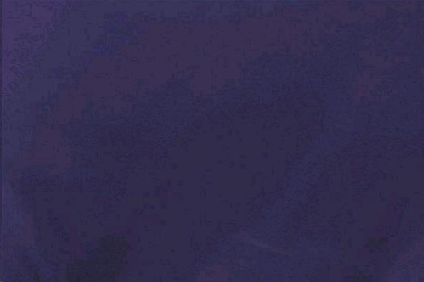 Purple Poly Napkin